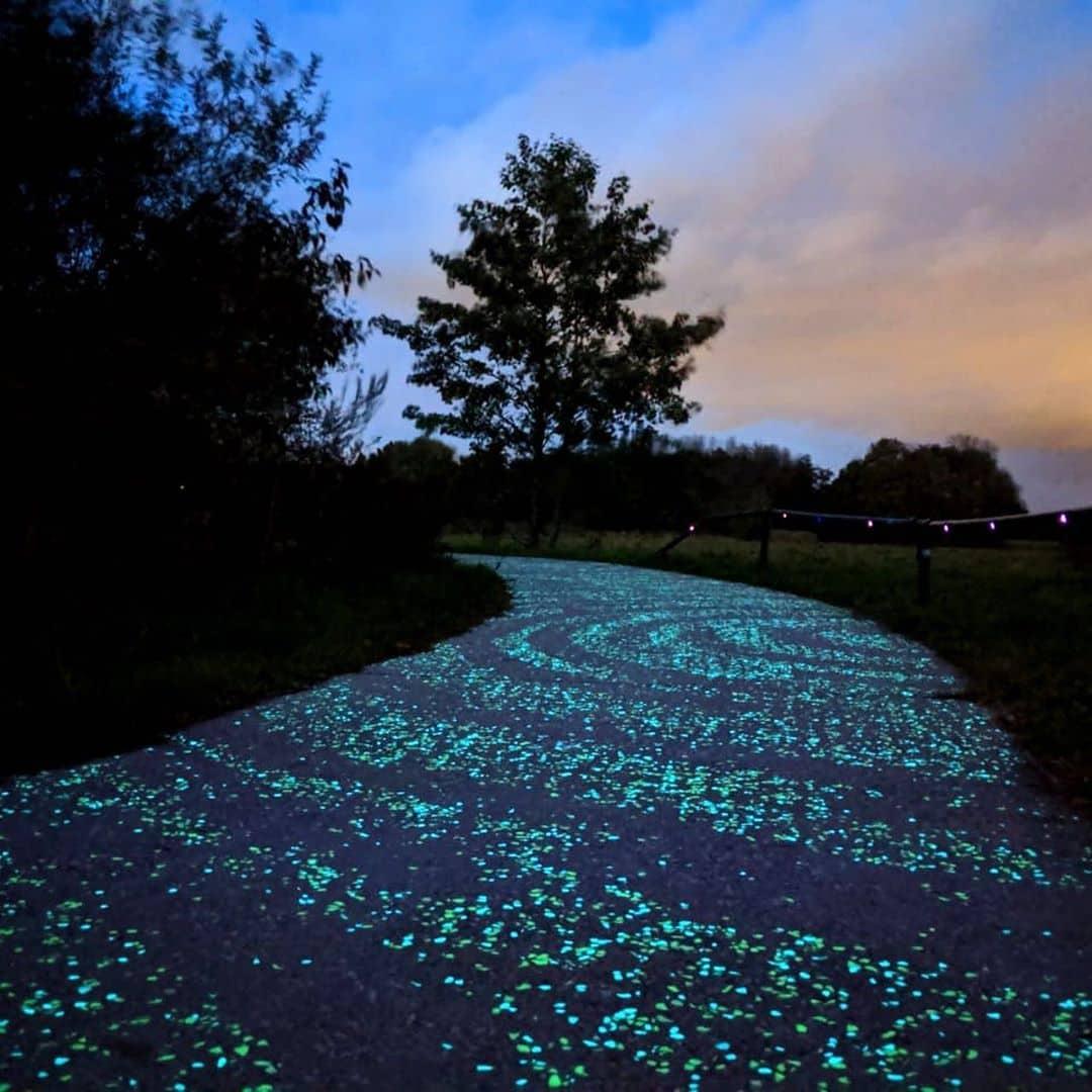 Светящаяся велодорожка в Нидерландах